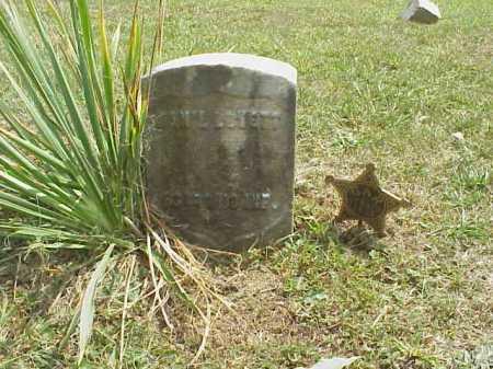 LOVETT, DAN'L - Meigs County, Ohio   DAN'L LOVETT - Ohio Gravestone Photos