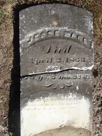 MACE, JESSE - VIEW #2 - Meigs County, Ohio   JESSE - VIEW #2 MACE - Ohio Gravestone Photos
