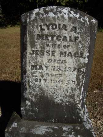 MACE, LYDIA A. - OVERALL VIEW - Meigs County, Ohio | LYDIA A. - OVERALL VIEW MACE - Ohio Gravestone Photos