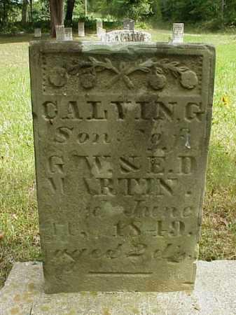 MARTIN, CALVIN G. - Meigs County, Ohio | CALVIN G. MARTIN - Ohio Gravestone Photos