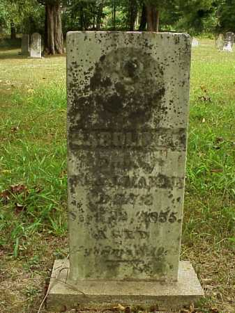 MARTIN, CAROLINE F. - Meigs County, Ohio | CAROLINE F. MARTIN - Ohio Gravestone Photos