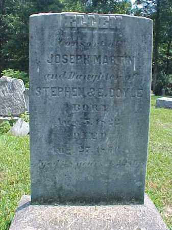 DOYLE MARTIN, ELLEN - Meigs County, Ohio | ELLEN DOYLE MARTIN - Ohio Gravestone Photos