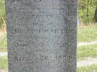 MARTIN, FANNY - Meigs County, Ohio | FANNY MARTIN - Ohio Gravestone Photos