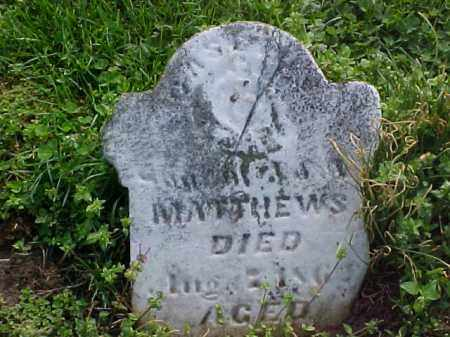 MATTHEWS, CASCIUS - Meigs County, Ohio | CASCIUS MATTHEWS - Ohio Gravestone Photos