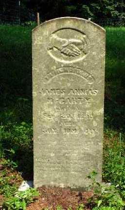 MCCARTY, JAMES ANNEAS - Meigs County, Ohio   JAMES ANNEAS MCCARTY - Ohio Gravestone Photos