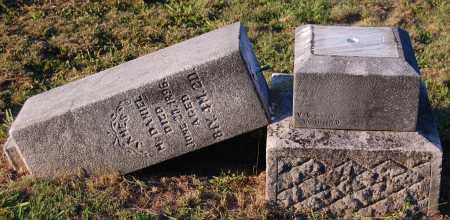 MCDANIEL, JAMES - Meigs County, Ohio | JAMES MCDANIEL - Ohio Gravestone Photos