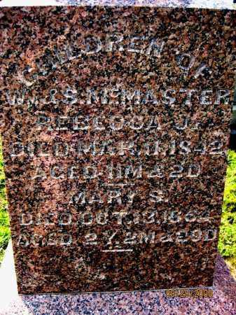 MCMASTER, MARY S. - Meigs County, Ohio | MARY S. MCMASTER - Ohio Gravestone Photos