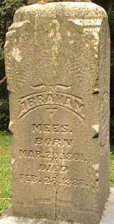 MEES, ABRAHAM - Meigs County, Ohio | ABRAHAM MEES - Ohio Gravestone Photos