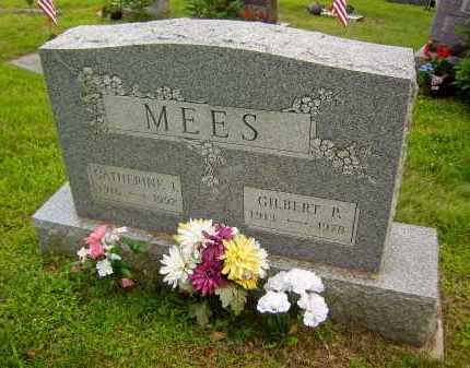 MEES, CATHERINE IRENE - Meigs County, Ohio | CATHERINE IRENE MEES - Ohio Gravestone Photos