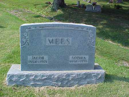MEES, JACOB - Meigs County, Ohio | JACOB MEES - Ohio Gravestone Photos