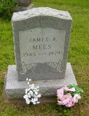 MEES, JAMES R. - Meigs County, Ohio   JAMES R. MEES - Ohio Gravestone Photos