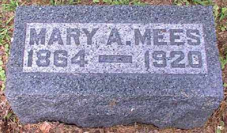 MEES, MARY A. - Meigs County, Ohio | MARY A. MEES - Ohio Gravestone Photos