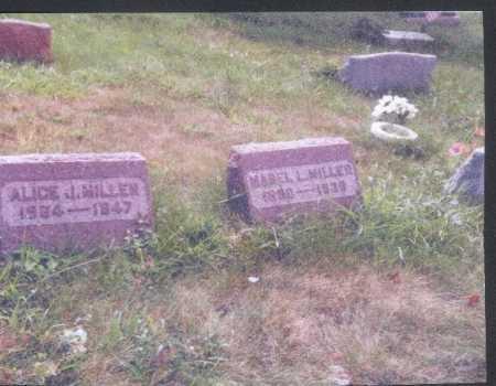 MILLER, ALICE J. - Meigs County, Ohio | ALICE J. MILLER - Ohio Gravestone Photos