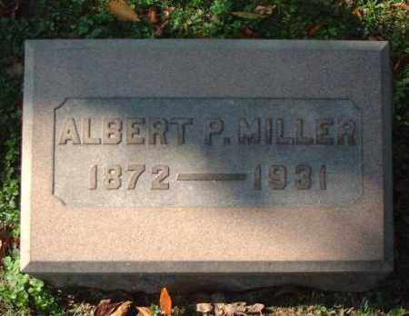 MILLER, ALBERT P. - Meigs County, Ohio | ALBERT P. MILLER - Ohio Gravestone Photos
