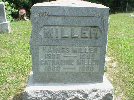 MILLER, HAINES - Meigs County, Ohio | HAINES MILLER - Ohio Gravestone Photos