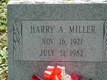 MILLER, HARRY A. - Meigs County, Ohio | HARRY A. MILLER - Ohio Gravestone Photos