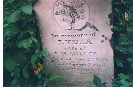 MILLER, LYDIA - Meigs County, Ohio | LYDIA MILLER - Ohio Gravestone Photos