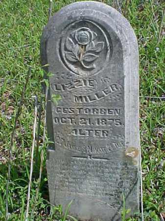 MILLER, LIZZIE - Meigs County, Ohio | LIZZIE MILLER - Ohio Gravestone Photos