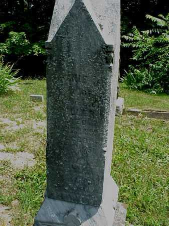 MILLER, WINNIE - Meigs County, Ohio | WINNIE MILLER - Ohio Gravestone Photos