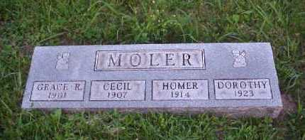 MOLER, HOMER - Meigs County, Ohio | HOMER MOLER - Ohio Gravestone Photos