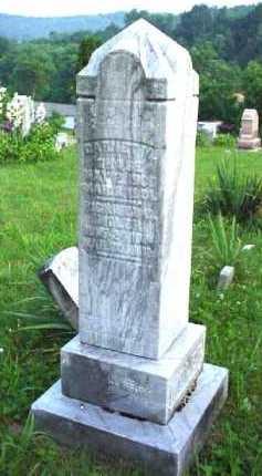 MOLER, RICHARD - Meigs County, Ohio | RICHARD MOLER - Ohio Gravestone Photos