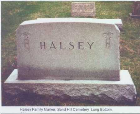 MONUMENT, HALSEY - Meigs County, Ohio | HALSEY MONUMENT - Ohio Gravestone Photos