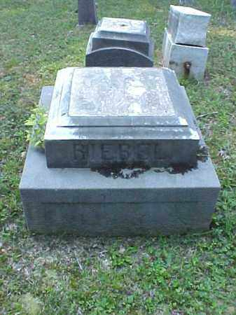 MONUMENT, RIEBEL - Meigs County, Ohio | RIEBEL MONUMENT - Ohio Gravestone Photos