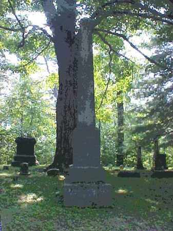 MONUMENT, REMINGTON - Meigs County, Ohio | REMINGTON MONUMENT - Ohio Gravestone Photos