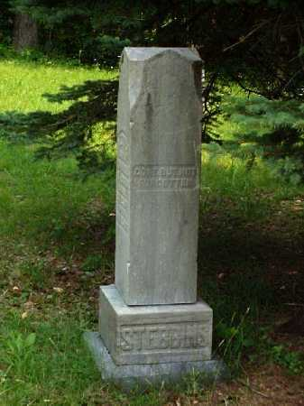 MONUMENT, STEBBINS - Meigs County, Ohio | STEBBINS MONUMENT - Ohio Gravestone Photos