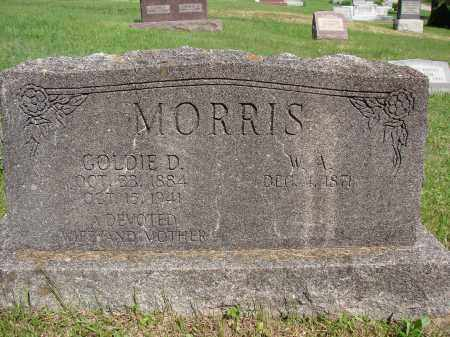 MORRIS, GOLDIE D - Meigs County, Ohio | GOLDIE D MORRIS - Ohio Gravestone Photos