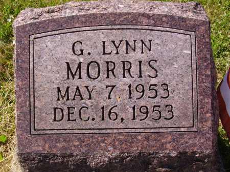 MORRIS, GLADYS LYNN - Meigs County, Ohio | GLADYS LYNN MORRIS - Ohio Gravestone Photos