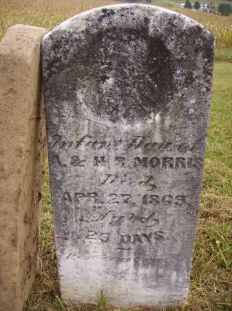 MORRIS, INFANT DAUGHTER - Meigs County, Ohio | INFANT DAUGHTER MORRIS - Ohio Gravestone Photos