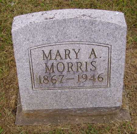 MORRIS, MARY A. - Meigs County, Ohio | MARY A. MORRIS - Ohio Gravestone Photos
