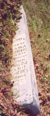 MORRISON, JAMES W. - Meigs County, Ohio | JAMES W. MORRISON - Ohio Gravestone Photos