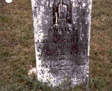 MORTON, ANNICE - Meigs County, Ohio | ANNICE MORTON - Ohio Gravestone Photos