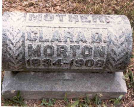 DOUGLASS MORTON, CLARA - Meigs County, Ohio | CLARA DOUGLASS MORTON - Ohio Gravestone Photos