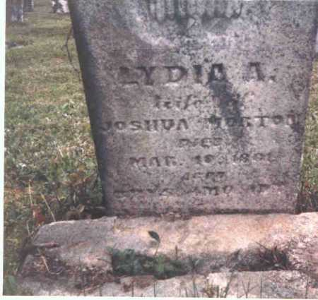 MORTON, LYDIA A. - Meigs County, Ohio | LYDIA A. MORTON - Ohio Gravestone Photos