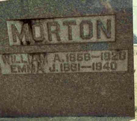 MORTON, WILLIAM A. - Meigs County, Ohio | WILLIAM A. MORTON - Ohio Gravestone Photos