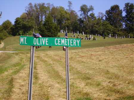MT. OLIVE, CEMETERY - Meigs County, Ohio | CEMETERY MT. OLIVE - Ohio Gravestone Photos