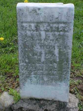 MURRAY, HYATTE - Meigs County, Ohio | HYATTE MURRAY - Ohio Gravestone Photos
