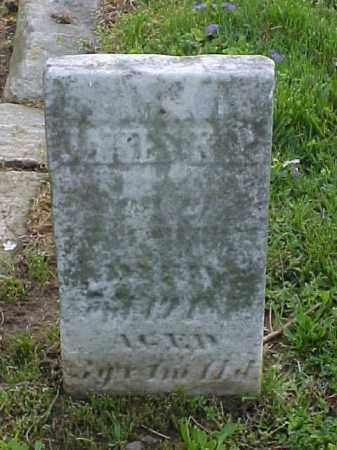 MURRAY, JAMES A. P. - Meigs County, Ohio   JAMES A. P. MURRAY - Ohio Gravestone Photos
