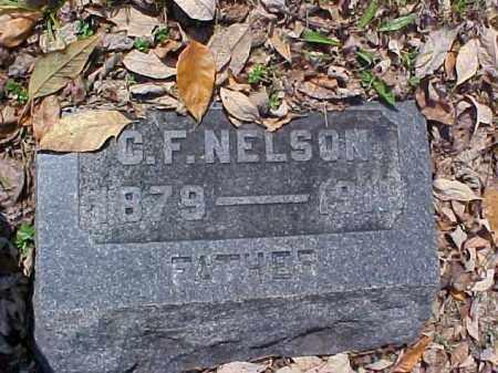 NELSON, C. F. - Meigs County, Ohio | C. F. NELSON - Ohio Gravestone Photos