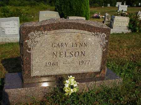NELSON, GARY LYNN - Meigs County, Ohio | GARY LYNN NELSON - Ohio Gravestone Photos