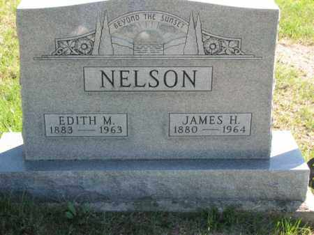 NELSON, JAMES H. - Meigs County, Ohio | JAMES H. NELSON - Ohio Gravestone Photos