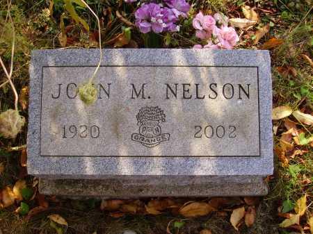 NELSON, JOHN M. - Meigs County, Ohio | JOHN M. NELSON - Ohio Gravestone Photos
