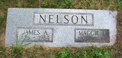 NELSON, JAMES A. - Meigs County, Ohio | JAMES A. NELSON - Ohio Gravestone Photos