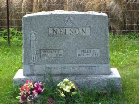 NELSON, NELLIE E. - Meigs County, Ohio | NELLIE E. NELSON - Ohio Gravestone Photos