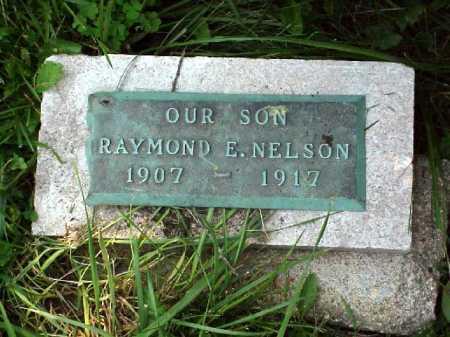 NELSON, RAYMOND E. - Meigs County, Ohio | RAYMOND E. NELSON - Ohio Gravestone Photos