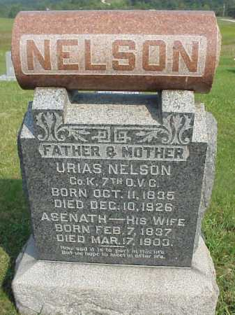 NELSON, URIAS - Meigs County, Ohio | URIAS NELSON - Ohio Gravestone Photos