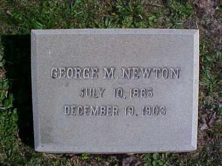 NEWTON, GEORGE M. - Meigs County, Ohio | GEORGE M. NEWTON - Ohio Gravestone Photos